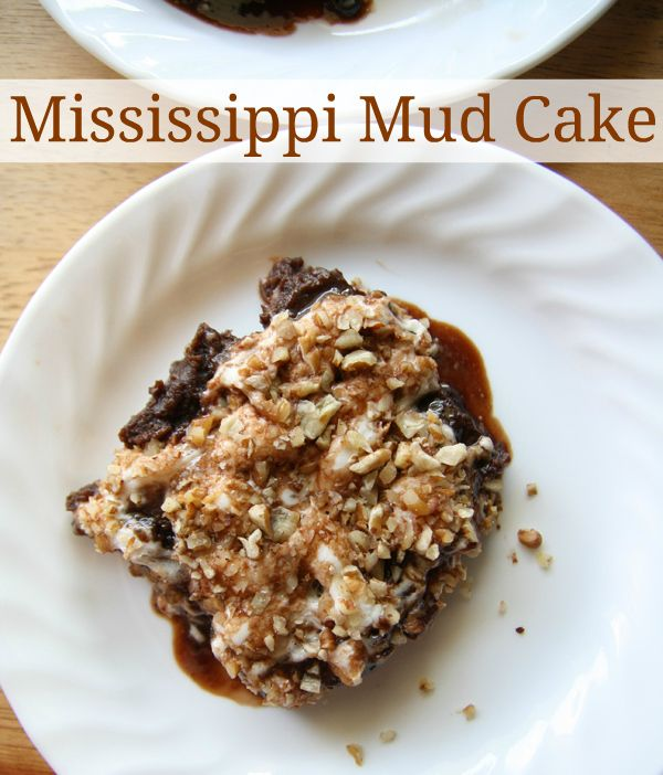 Mississippi Mud Cake Recipe & Southern Living Cookbook Giveaway