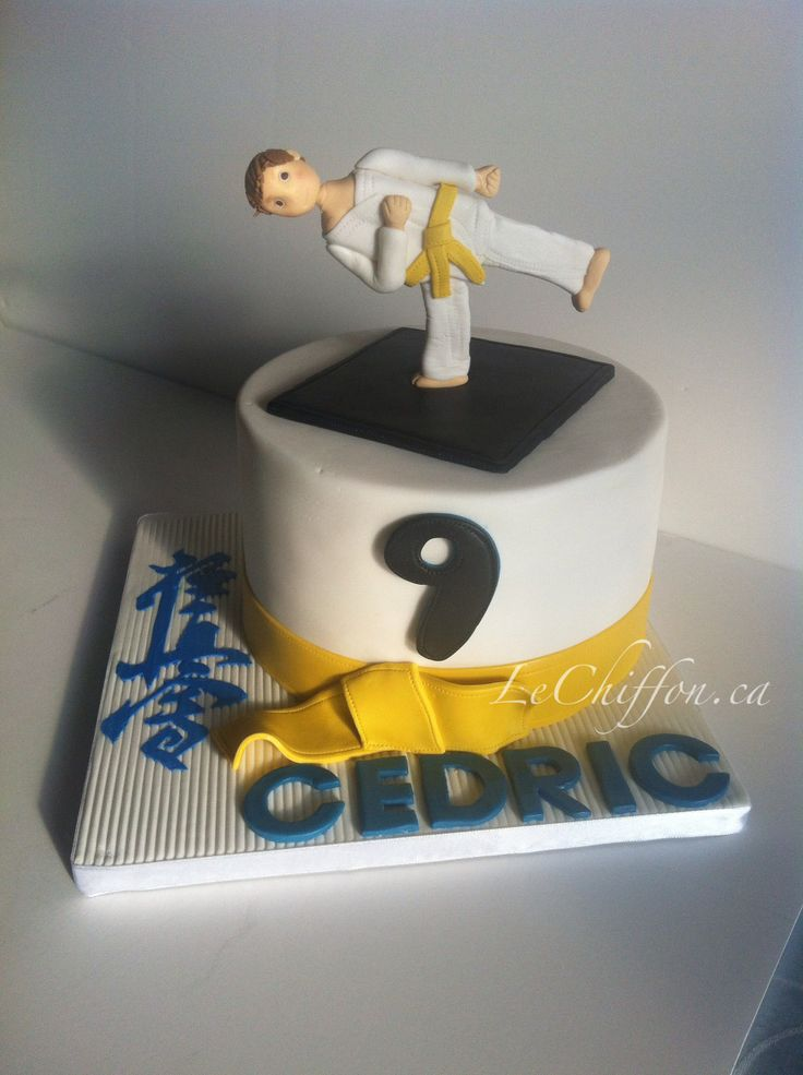 Karate Cakes Cake Ideas and Designs