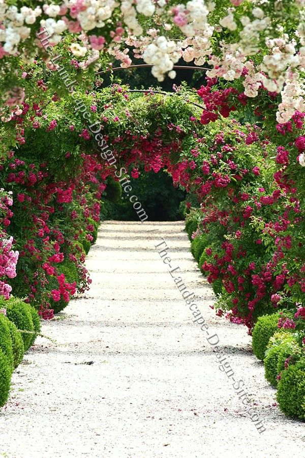 Rose garden designs rose garden arbor ideas for Garden design with roses