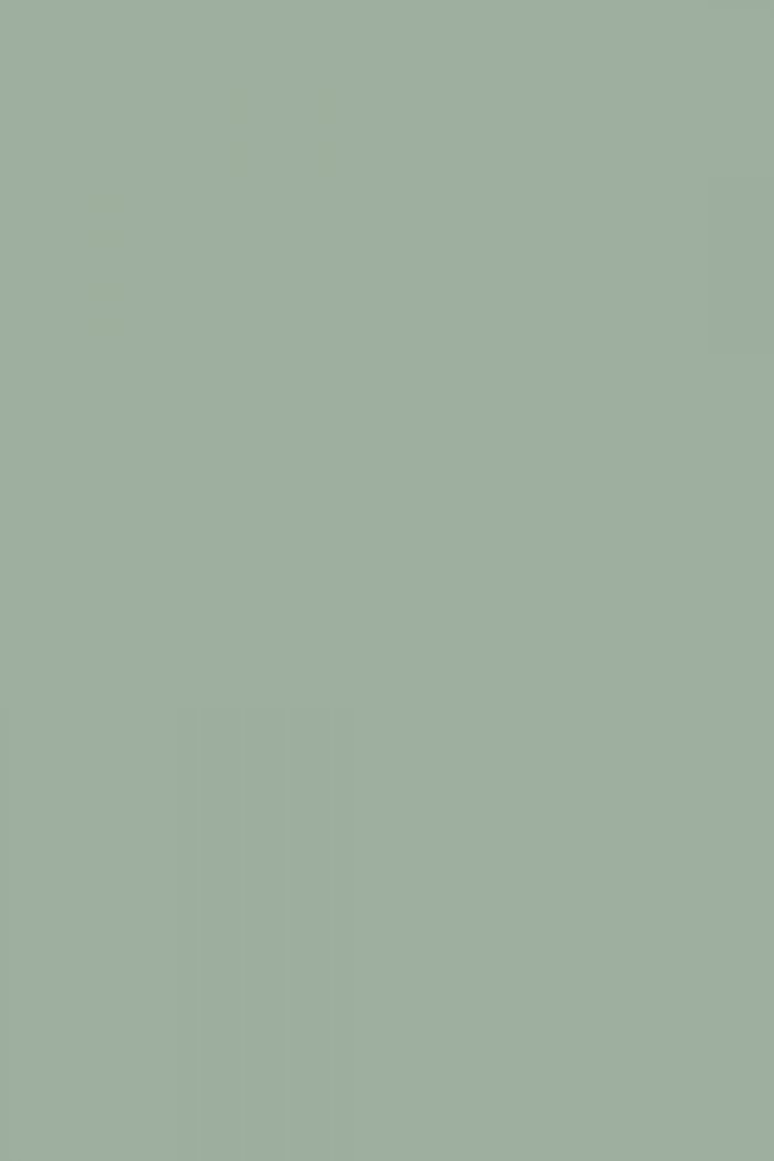 farrow and ball green blue what color pinterest. Black Bedroom Furniture Sets. Home Design Ideas