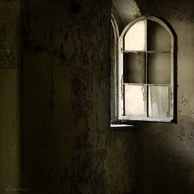 moggierocket on flickr