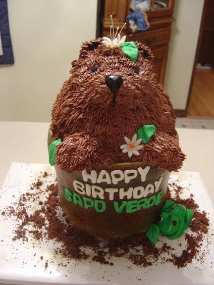 groundhog cake | Piece of Cake! | Pinterest