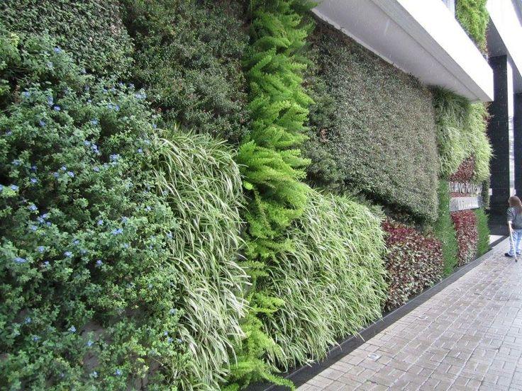 jardim vertical autocad:Daniel Correia Verde