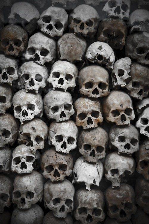 stack of skulls | Head bone | Pinterest