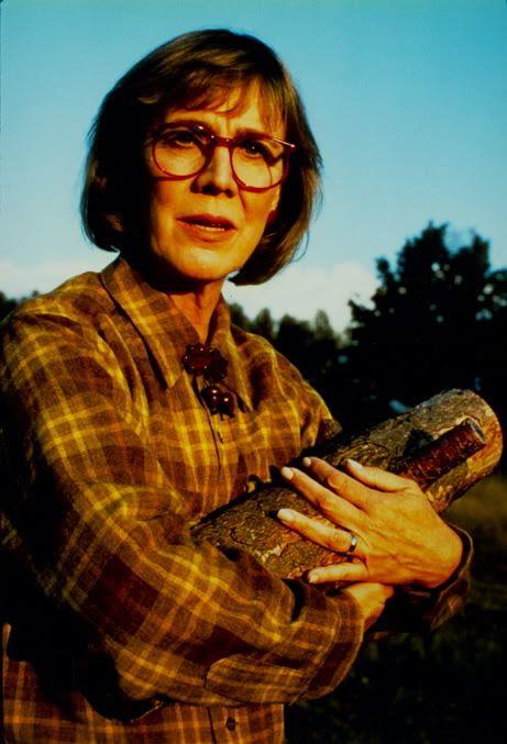 """I carry a log - yes. Is it funny to you? It is not to me. Behind all things are reasons."" Twin Peaks"