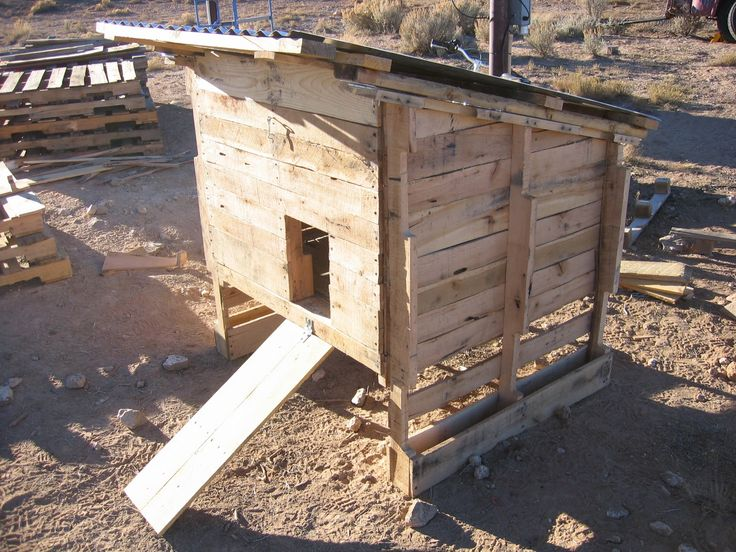 making a chicken coop out of pallets gardening pinterest