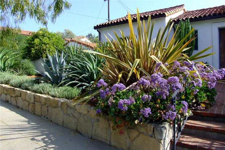 Spanish Style Garden w plant names Home Style Spanish