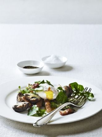 Poached Duck | Muscovy Duck Breast | Pinterest