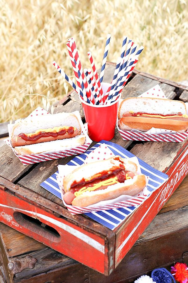 Happy Birthday America 4th of July Picnic