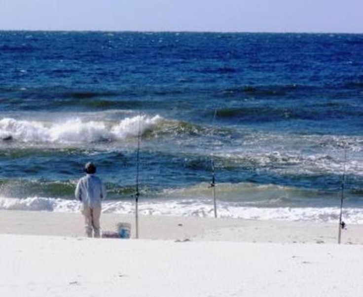 surf fishing at perdido key destination pensacola