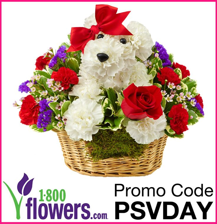 www.1800flowers coupon