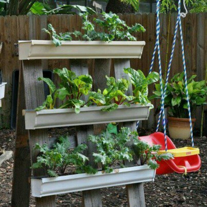 Rain gutters as planters outside ideas pinterest for Rain gutter planter box