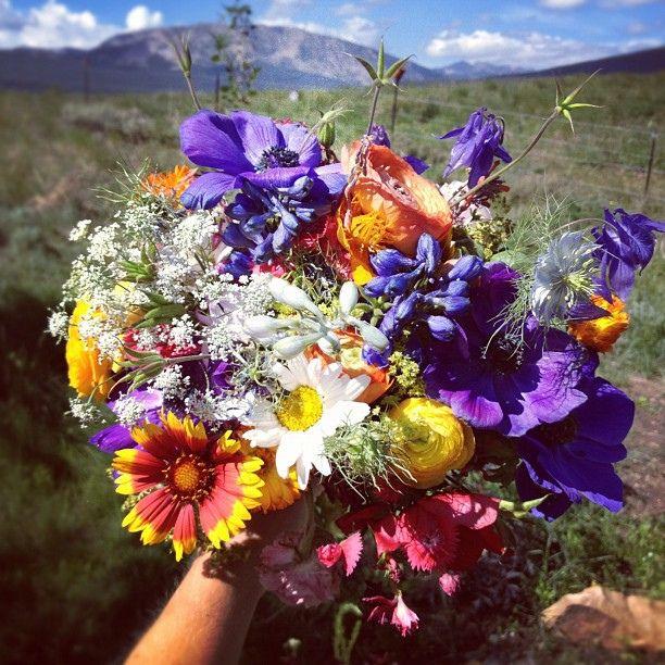 how to make wildflower wedding bouquets celebration day pinterest. Black Bedroom Furniture Sets. Home Design Ideas