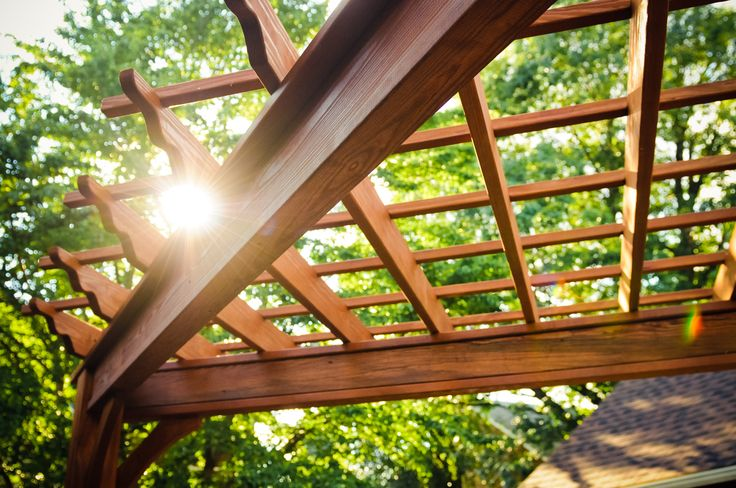 triangular pergola adds definition and detail to this compact backyard