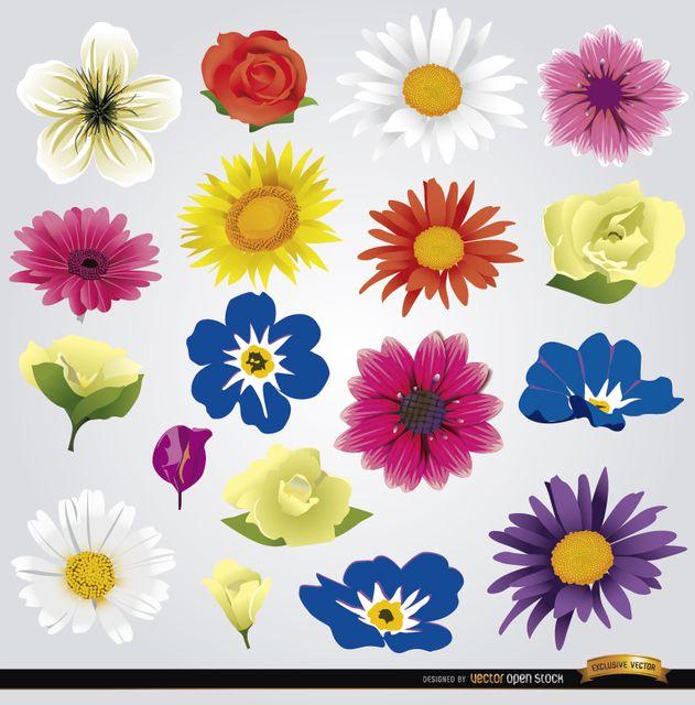 Vectores Gratis Flores Imagenes En Taringa