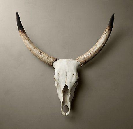 steer-skull.jpg (461×450)