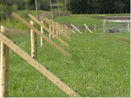 ELECTRIC FENCE SUPPLIES AND KITS FOR HORSES, CATTLE AND