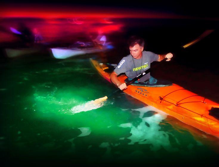 Bioluminescent Kayaking