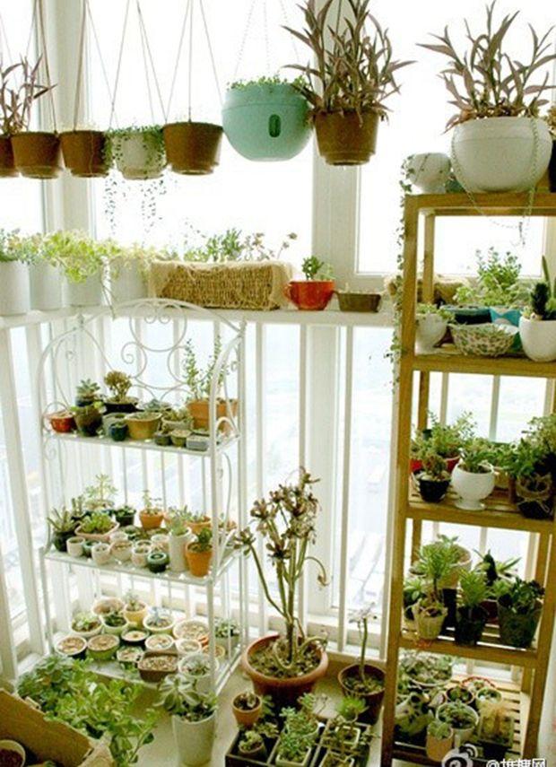 bedroom plants pinterest