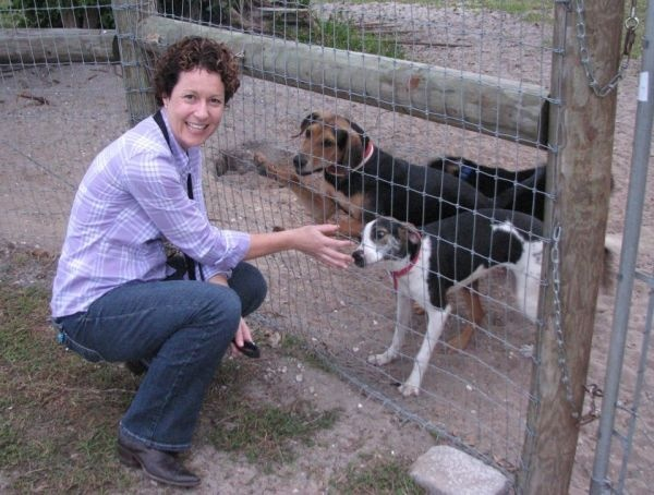 Lorrie browne stops to say hello to big dog ranch rescue friends