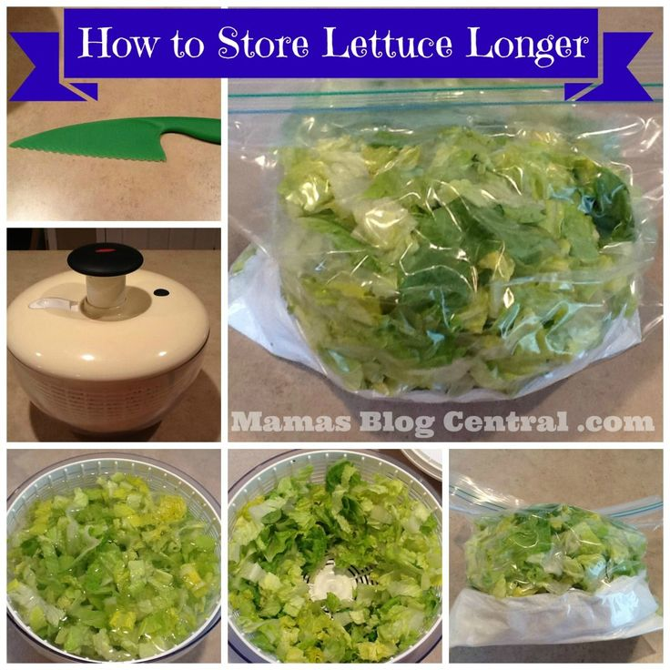 How To Store Lettuce Longer
