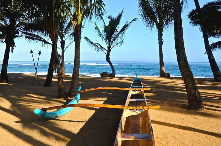 View from mama 39 s fish house maui travel maui pinterest for Mama s fish house
