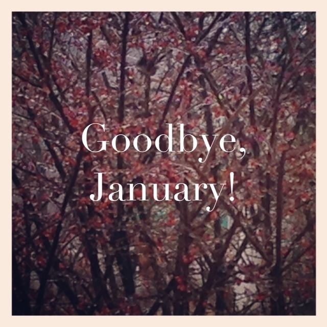 Goodbye January quotes quote trees months january january quotes february february quotes goodbye january