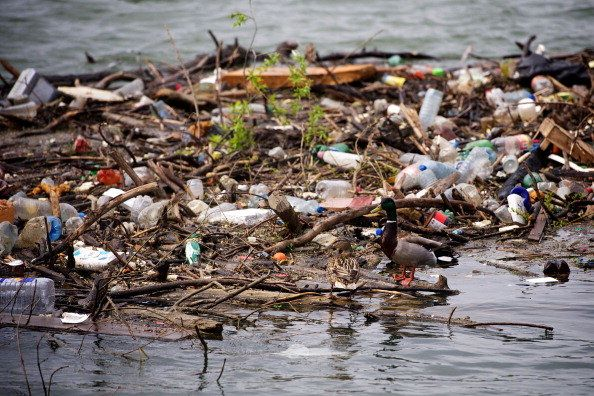 air and water pollution in hyderabad essay