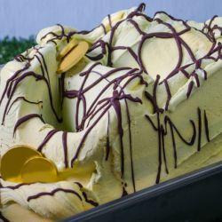 pistachio custard gelato - what the commercial purveyors use/ PreGel ...