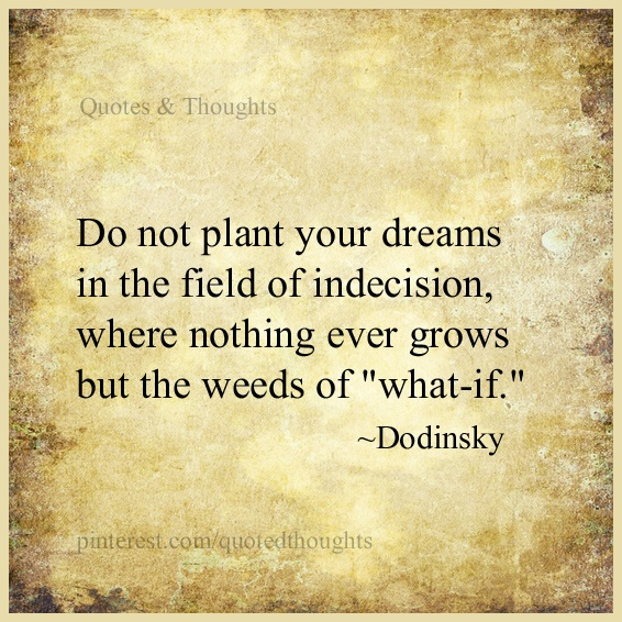 "Do not plant your dreams in the field of indecision, where nothing ever grows but the weeds of ""what-if.""  ~Dodinsky"