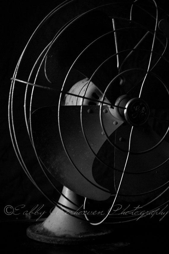 photography workshop washington dc I