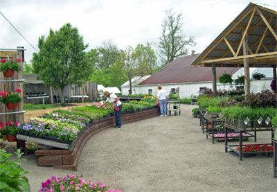 Garden center displays bing images garden center ideas for Garden center designs
