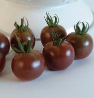 Black Cherry (OG) maters  (Solanum lycopersicum)  from Johnny's Seeds