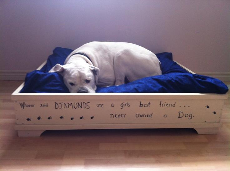 Diy Dog Bed Doggie Stuff Pinterest