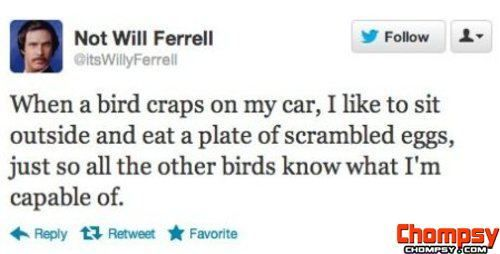 Will Ferrell quotes 1