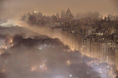 Foggy Night, Central Park, New York City  photo via marta