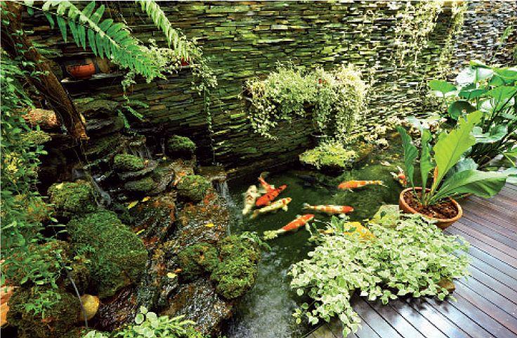 Small koi pond with bridge rachael edwards for Small koi pond