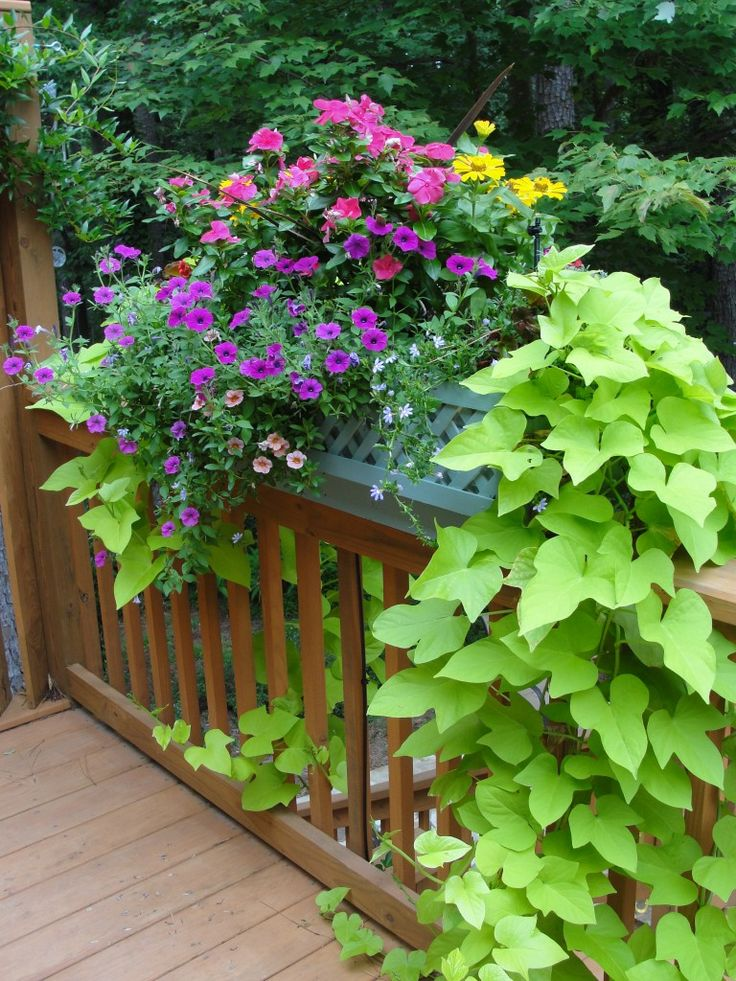 deck railing planter box outdoor spaces pinterest