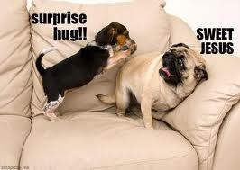 I'm the surprise hugger. I've seen this face. I'm looking at you @Whitney Walker 0_0