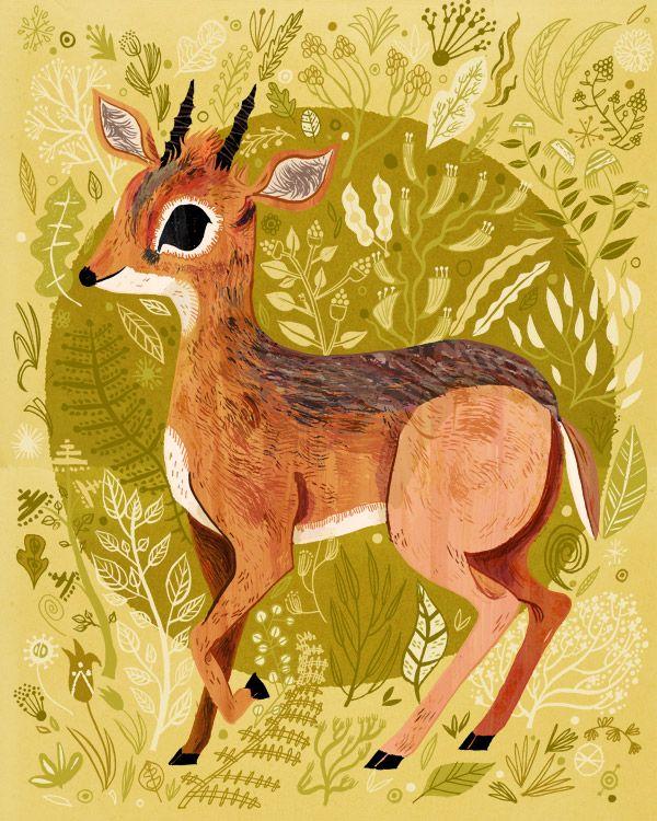 Pretty Things - Animals by Meg Hunt