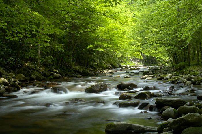 Little Pigeon River Smoky Mountains Tn Favorite Times