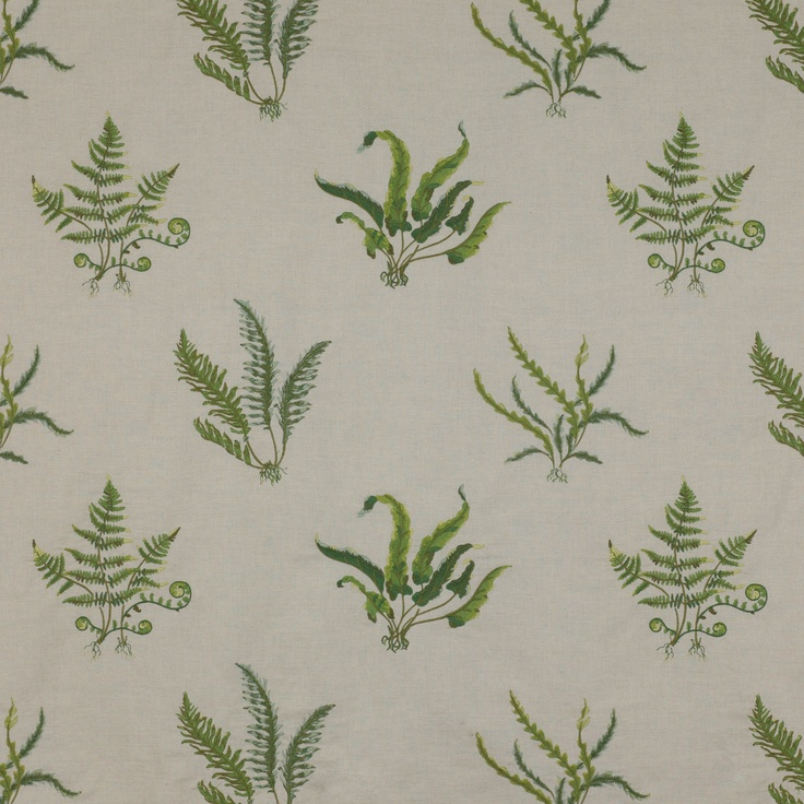 Ferns Fabric - Colefax Design Library