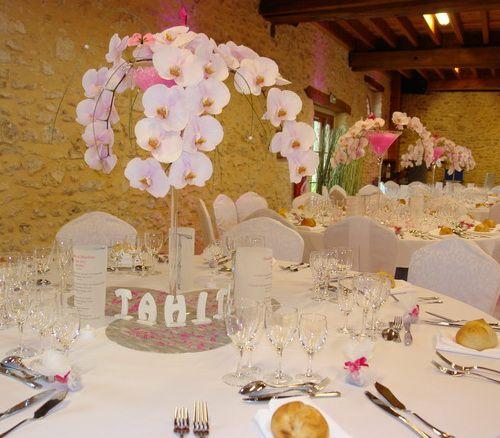 Centre de table vase martini orchid e centre de table - Vase plat centre de table ...