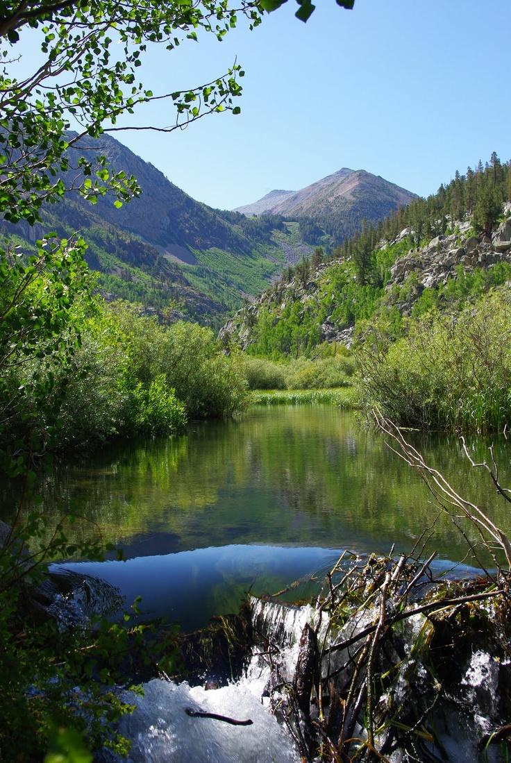 Fishing bishop creek for trout something that reminds me for Bishop creek fishing