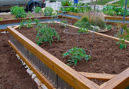 raised beds corrugated tin and wood Garden Pinterest