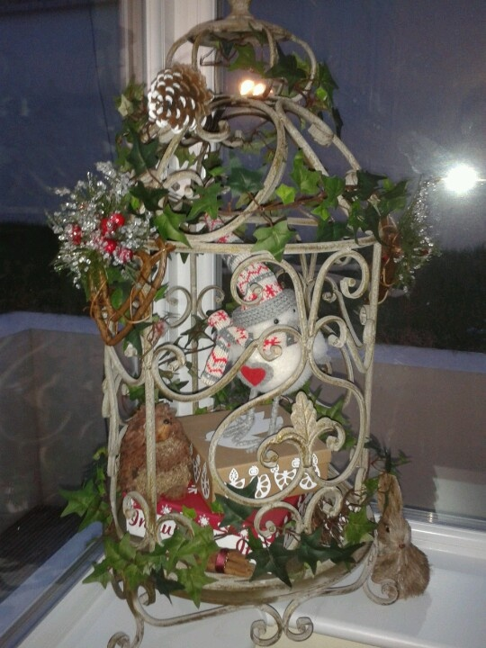 Winter bird cage decoration i love it pinterest for Cage a oiseaux decorative