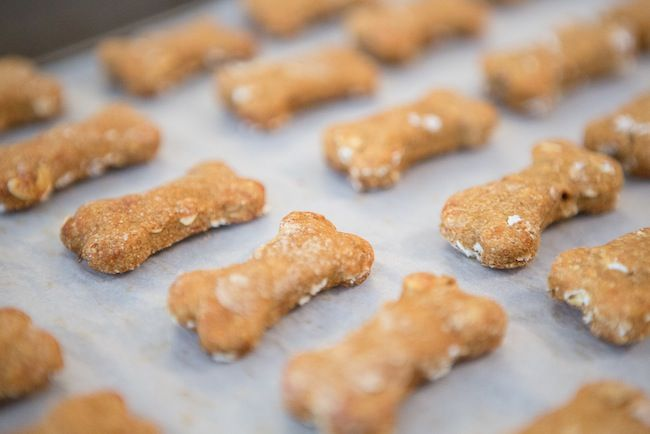 Calling all dog lovers! Treat your precious pooch to these all-natural dog treats you can bake at home.