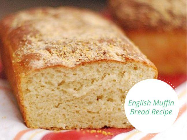 English Muffin Bread - Momtastis.com