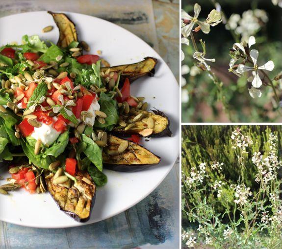 roaster japanese eggplant | Food I will never make | Pinterest