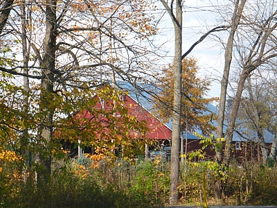 My neighbor's barn